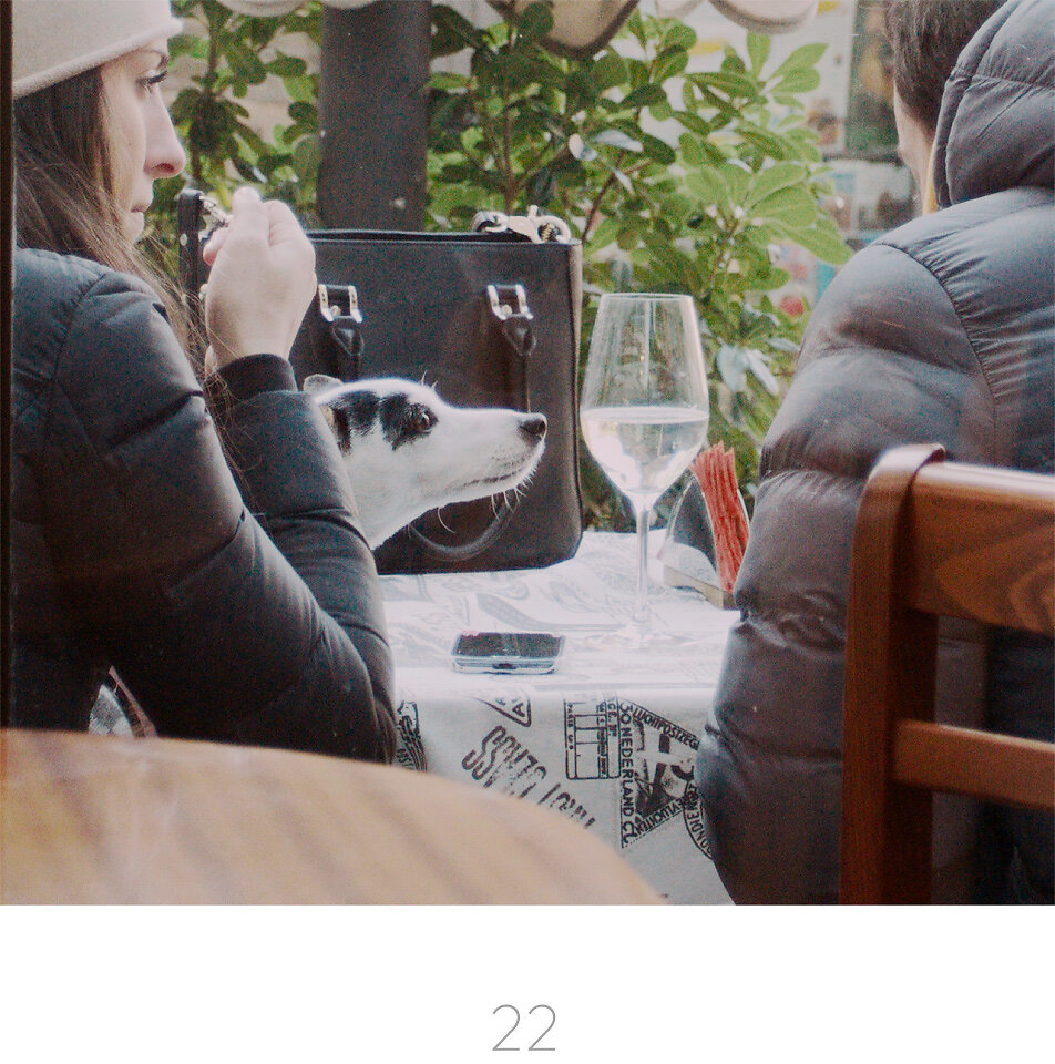 Asset-22.jpg